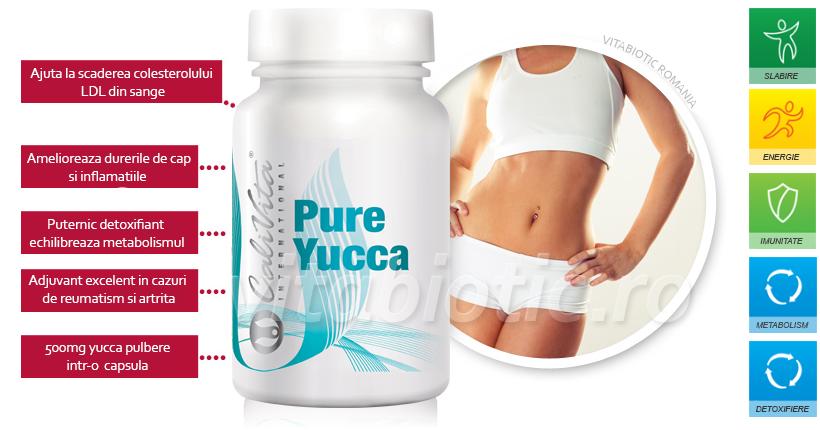 yucca calivita vitabiotic